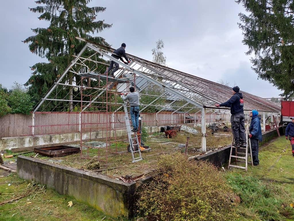 demontaż kompleksów w szklarniowych